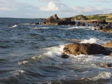 Waves washing the shoreline